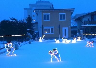 2009 – Weihnachtsbeleuchtung der Parz. 223.