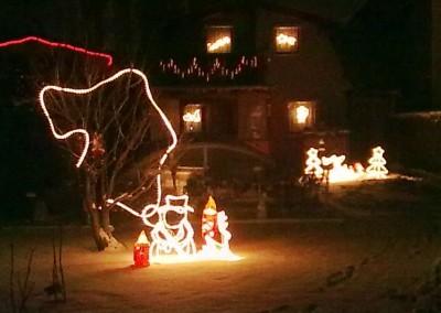2009 – Weihnachtsbeleuchtung der Parz. 16.