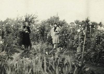 1922 - Parzelle 412