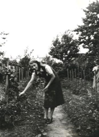 1930 - Parzelle 378